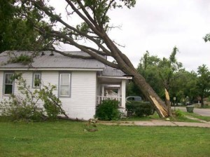 Roof damaged by fallen tree